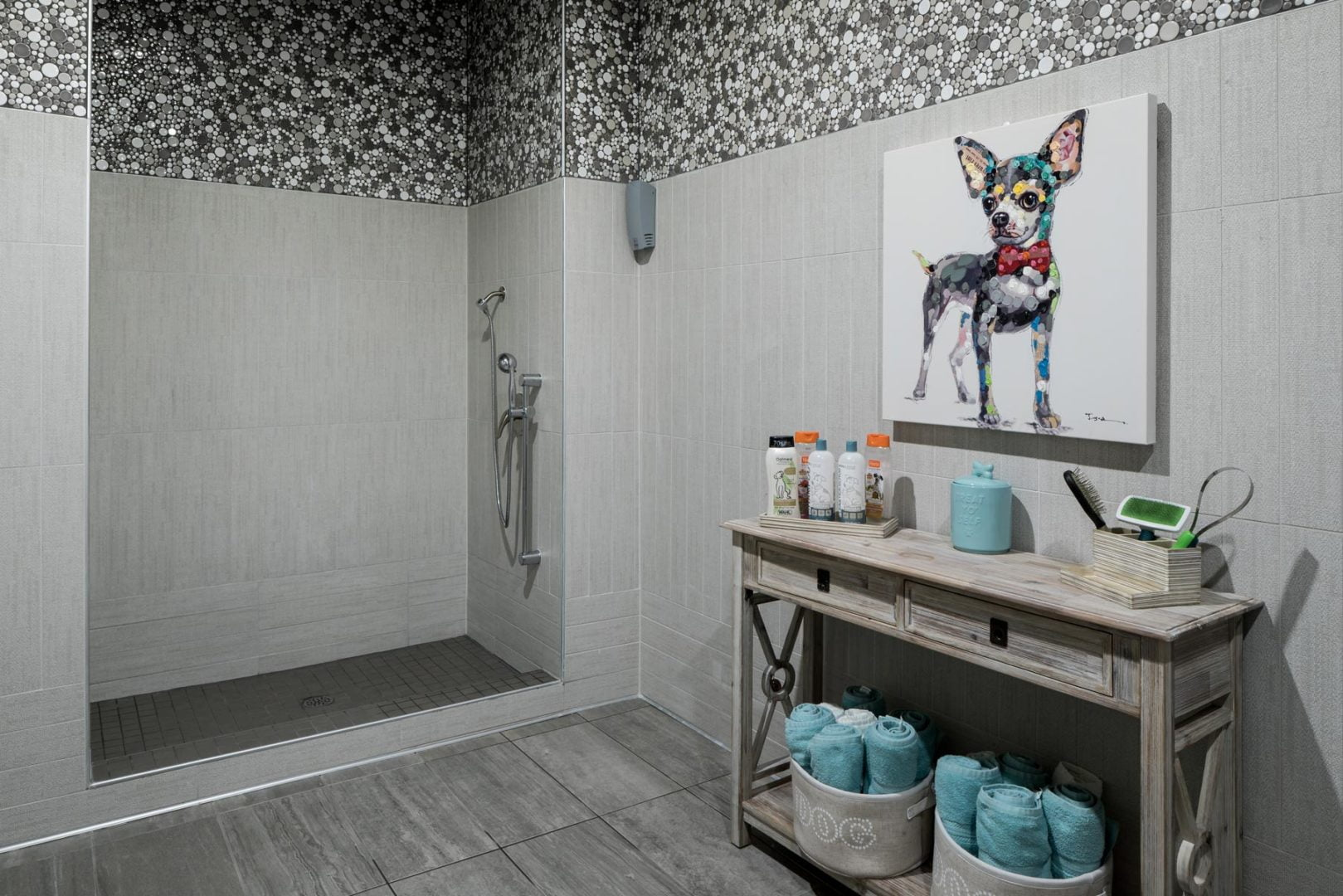 ft worth apartments with pet wash 1