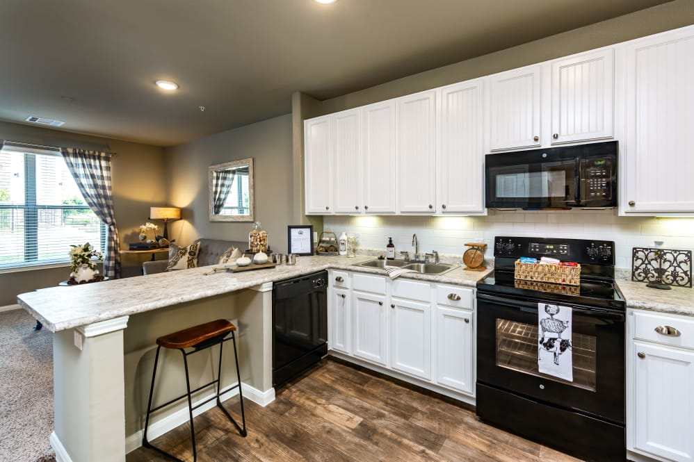 one bedroom apartments in frisco