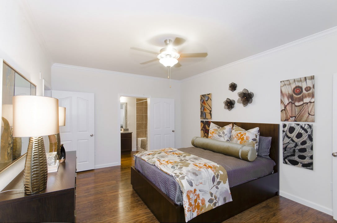 Apartments for lease in Little Elm